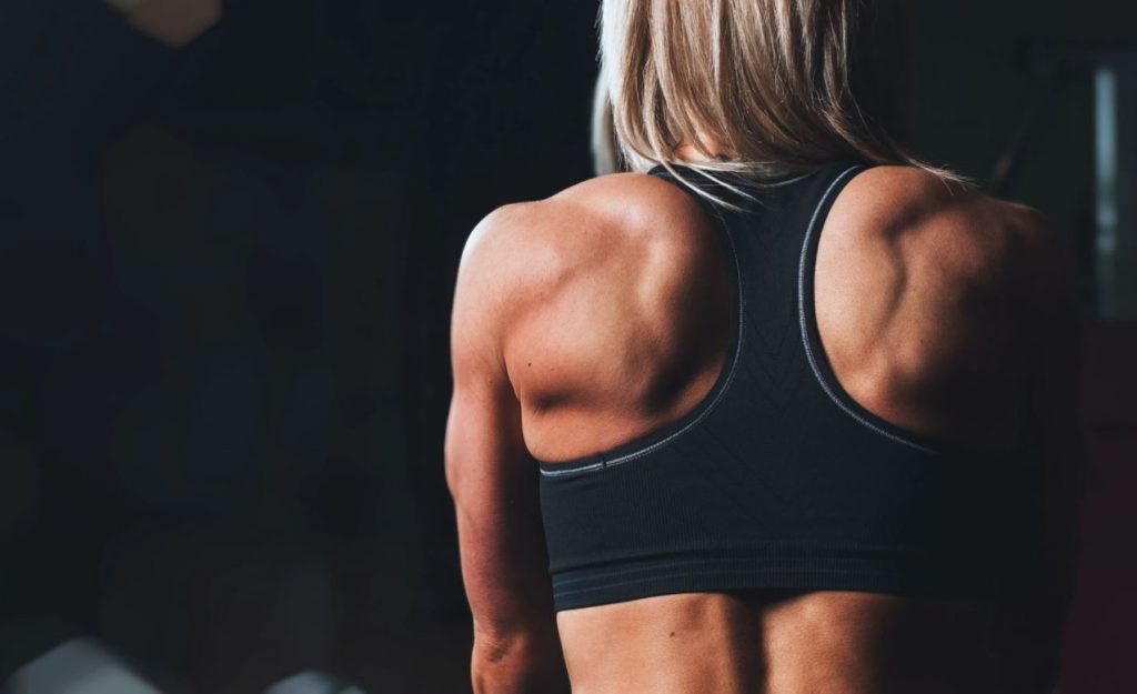 back-muscle