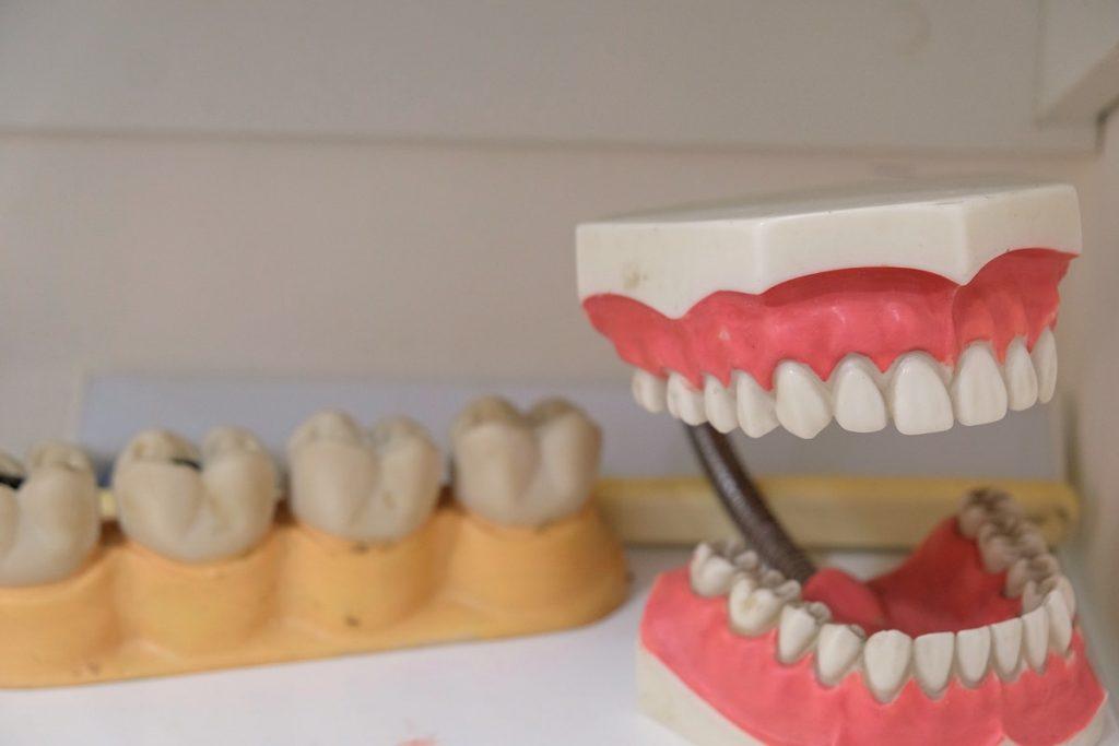sets of teeth